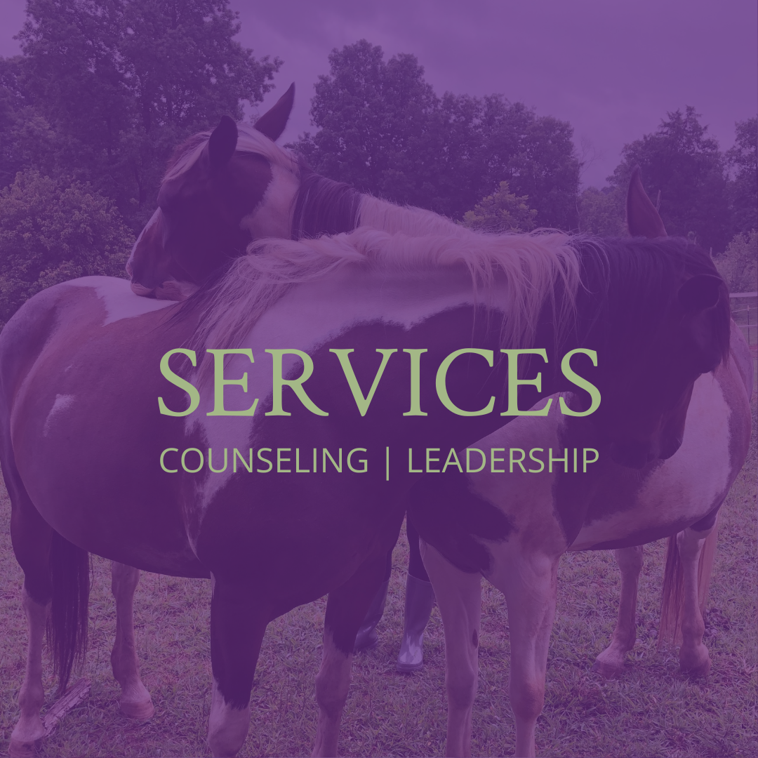 Services we offer at Willow Equine for counseling and leadership